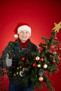 Excellent holiday portrait of happy man in santa cap decorated xmas tree showing thumb up Royalty Free Stock Photos