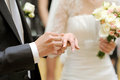 Exchanging of Wedding Rings Stock Image