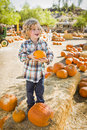 Excited boy holding his pumpkin at a pumpkin patch adorable little sitting and in rustic ranch setting the Stock Image