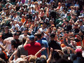 Excited fans reach hands and gloves for foul ball Royalty Free Stock Photo