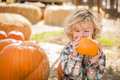 Excited little boy sitting and holding his pumpkin at pumpkin patch adorable in a rustic ranch setting the Royalty Free Stock Photography