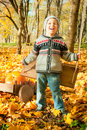 Excited little boy on a swing outdoor Royalty Free Stock Photography