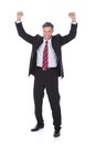 Excited mature businessman Royalty Free Stock Photo