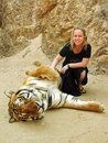 Excited young girl cuddling tiger holiday Thailand Royalty Free Stock Photo