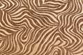 stock image of  Tropical African fur texture. Exotic background. Beige brown background. Pattern, nature background, tribal ornament