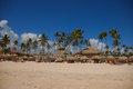 Exotic carribean beach, Punta Cana Royalty Free Stock Photo