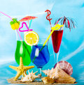 Exotic cocktails with tropical fruit shells and stones Stock Image