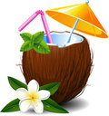 Exotic coconut cocktail Stock Photography