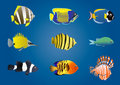 Exotic fishes Royalty Free Stock Photos