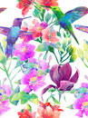 Exotic flowers and birds raster art on a white background Stock Image