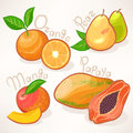 Exotic fruits juicy summer mango pear papaya and orange Stock Photography