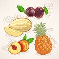 Exotic fruits juicy summer mango pear papaya and orange Royalty Free Stock Image