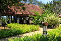 Path in a tropical garden. Royalty Free Stock Photo