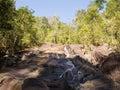 Exotic Jungle - Thailand Royalty Free Stock Photo