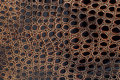 Exotic leather texture Royalty Free Stock Photography