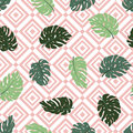 Exotic leaves and geometrical ornament. Seamless hand drawn tropical pattern. Vector background with monstera and rhombus.