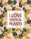 Exotic leaves, rainforest. Hand drawn tropical poster. Vector background with monstera and phrase.