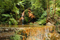 Exotic natural pool in the Azores Stock Photos