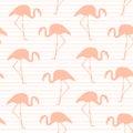 Exotic pink flamingo seamless pattern stripes