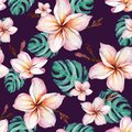 Exotic plumeria flowers and green monstera leaves in seamless tropical pattern. Deep purple background, vivid colors.