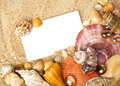 Exotic shell and crystals on sand Royalty Free Stock Photography