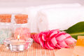 Exotic spa holiday with ginger flower and bath salts Royalty Free Stock Image
