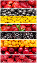Exotic summer fruits fresh collage Stock Photography