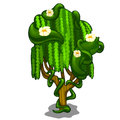 Exotic tree with creeping leaves and flowers