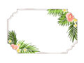 Exotic tropical border frame template plumeria