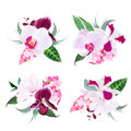 Exotic tropical floral bouquets arranged from Singapore orchid f