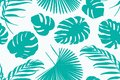 Exotic tropical greenery botanical pattern ornament with jungle palm tree monstera leaves bohemian decor background.