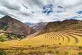 Expansive view of Inca terraces in Pisac, Sacred Valley, Peru Royalty Free Stock Photo