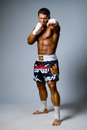 Experienced adult fighter punches during training kickboxing or muay thai full height Royalty Free Stock Photography