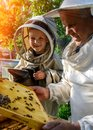 An experienced beekeeper transfers knowledge of beekeeping to a small beekeeper. The concept of transfer of experience. Royalty Free Stock Photo