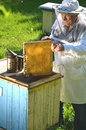 Experienced senior beekeeper working in his apiary the springtime Stock Photos