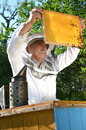 Experienced senior beekeeper working in his apiary the springtime Royalty Free Stock Photography