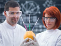Experimental studies on a grapefruit close up of two scientists in chemistry lab holding in hands and analizing an injected Royalty Free Stock Photo