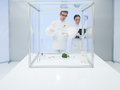 Experimenting on vegetables in the lab two scientists a a men and a woman studying a vegetable a sterile chamber Royalty Free Stock Images