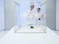 Experimenting on vegetables in the lab two scientists a a men and a woman studying a vegetable a sterile chamber Royalty Free Stock Image