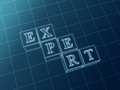 Expert blueprint Royalty Free Stock Photography