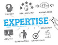 Expertise concept chart with keyword and icons vector illustration Royalty Free Stock Photo
