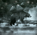 Exploring beautiful fantasy brown bear carrying on his back a sort of ballast lodge while crossing a river at night Royalty Free Stock Photography