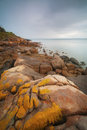 Exploring a rocky coastline the rocks of very rugged Stock Images