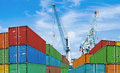 Export or import shipping cargo container stacks Royalty Free Stock Photo