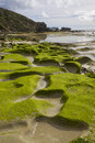 Exposed Rock Pools Stock Photography