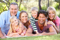 Extended Family Group Relaxing In Park Together Royalty Free Stock Photo
