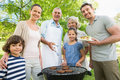 Extended family standing at barbecuing in park Stock Images