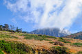 Extinct volcano,Jeju Halla Mountain, Eorimok Route Royalty Free Stock Photo