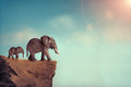 Extinction concept elephant family on edge of cliff Royalty Free Stock Photography