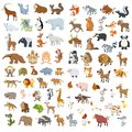 Extra big animals and birds set vector Royalty Free Stock Photo